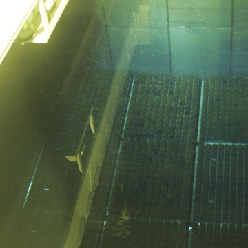 Image: Spent nuclear fuel rods at the Rokkasho nuclear fuel reprocessing plant