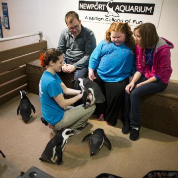 Image: Alexis Shapiro meets the aquarium's penguins