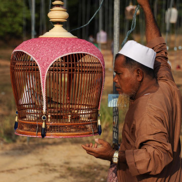 Image: A contestant displays a bird as part of a bird-singing contest