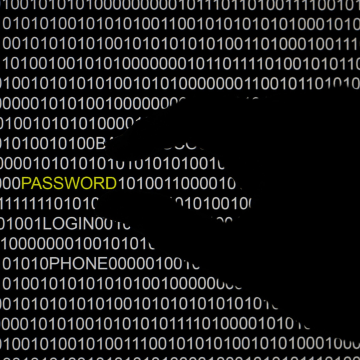 Image: The word 'password' is pictured on a computer screen