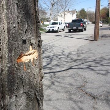 Image: A bullet scar in the Watertown neighborhood