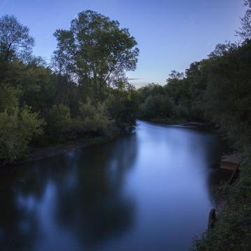 Image: Salmon stream