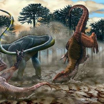 Image: L. laticauda, a new sauropod dinosaur