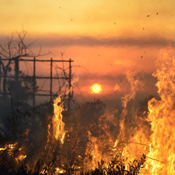 Image: Flames burn on hill in San Marcos, California on Wednesday