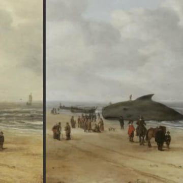 Image: Dutch restorers discovered a whale after cleaning a 17th century painting.