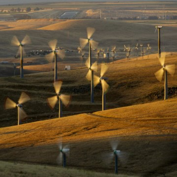 Image: Wind turbines line Altamont Pass near Livermore, Calif.