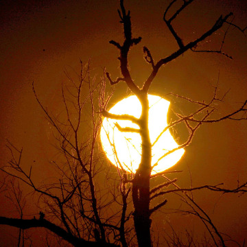 Image: Eclipse of the Sun