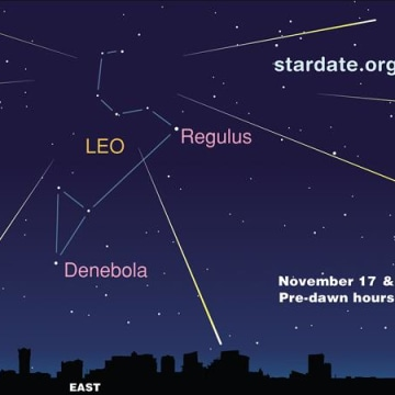 Image: Leonid chart