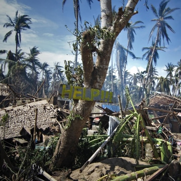 Image: Destroyed houses and trees with a slogan calling for help are seen along a road in the village of Mantang