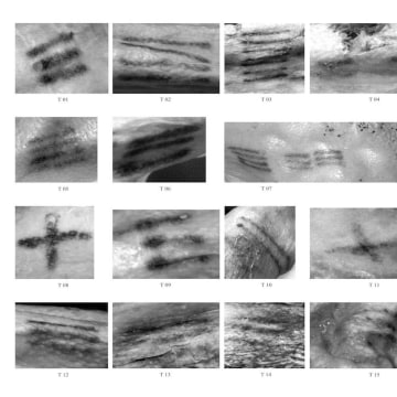 Image: The 61 lines that make up the tattoos on Ötzi, a 5,300-year-old iceman