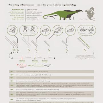 Image: Brontosaurus history