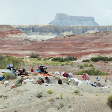 Image: Excavation