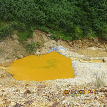 Image: Soil appears yellow after contamination at the Gold King Mine in San Juan County, Colorado