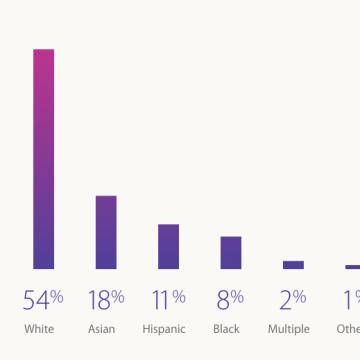 Apple Diversity Report