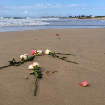 Image: Flowers on the beach where Reeva Steenkamp's ashes were scattered