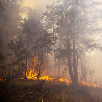 Image: A wildfire burns outside Okanogan, Wash.
