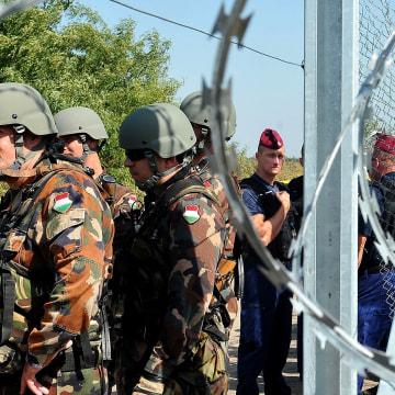 Image: Razor-wire fence at Serbia-Hungary border