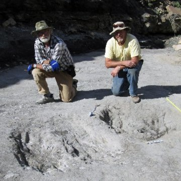 Image: Martin Lockley (R) and Ken Cart kneeling beside two large Cretaceous-age scrapes from western Colorado