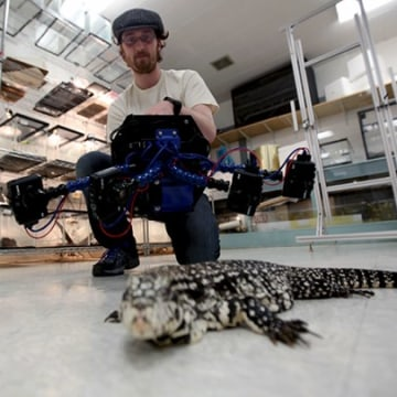 Professor's 'Beastcam' Makes For Quick 3-D Portraits of Animals
