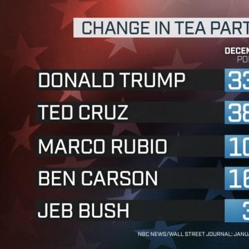 NBC News Wall Street Journal Poll TEA PARTY CHANGE