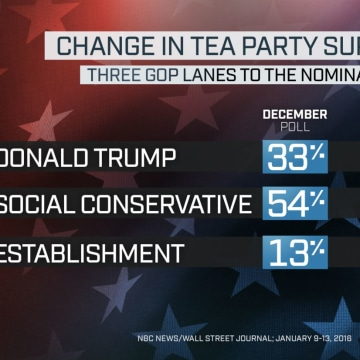 NBC News Wall Street Journal Poll TEA PARTY CHANGE THREE LANES GRAPHIC