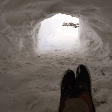 IMAGE: Interior view of Brooklyn igloo
