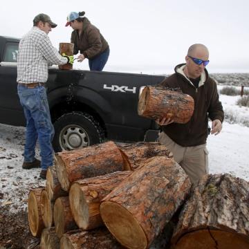 Image: Occupier Ritzheimer help supporters Joe and Amanda Rigney unload firewood at the Malheur National Wildlife Refuge near Burns
