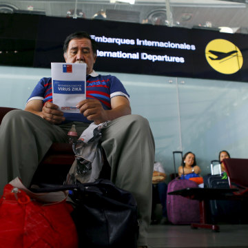 Image: A man reads a zika virus flyer from an information campaign by the Chilean Health Ministry at the departures area of Santiago's international airport