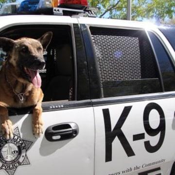 IMAGE: Las Vegas K9 officer Nicky