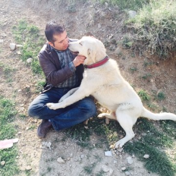 Image: Ghasem Fathalipour and a dog