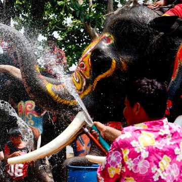 Image: Songkran festival