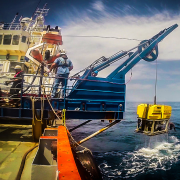 Image: The Remora III, the remotely-operated vehicle (ROV) being used in the search
