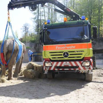 Image: Druk is lifted by a crane