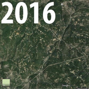 Basin Gulch in 2016