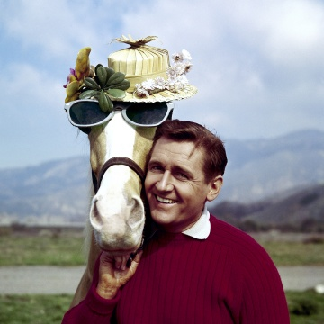 """Image: Alan Young of """"Mister Ed"""" died"""