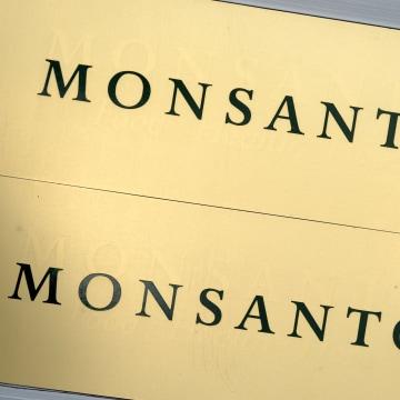 Image: Monsanto logo