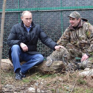 Image: Russian President Vladimir Putin pets a Persian leopard