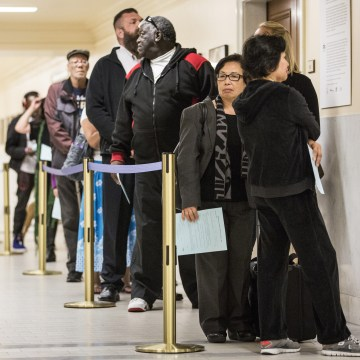 Image: California voters