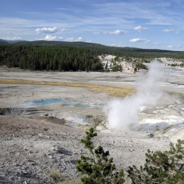 Yellowstone,Norris Geyser Basin