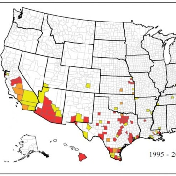 New Map Shows Where Zika Mosquitoes Live In US NBC News - Us map showing states