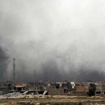 Image: Smoke billows from Fallujah's southern Shuhada neighbourhood