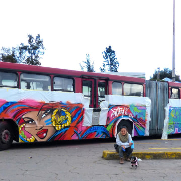 """EcoVia"" by TooFly in Quito, Ecuador, 2015"