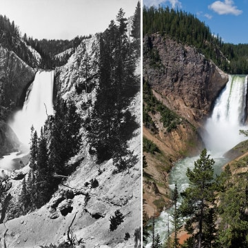 Image: Yellowstone's Lower Falls