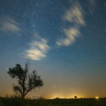 Image: Perseid meteor shower seen in Poland