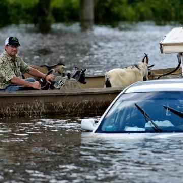 Image: Louisiana flooding