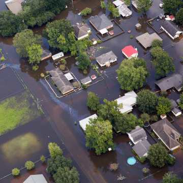 Image: Flood in Sorrento, La.
