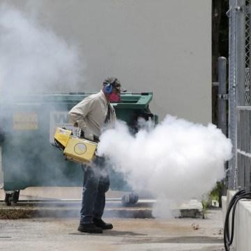 IMAGE: Mosquito control