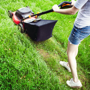 Mowing the Yard