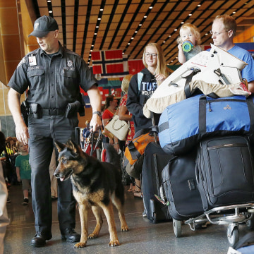 Image: Bomb-sniffing patrol at Logan International Airport on July 1
