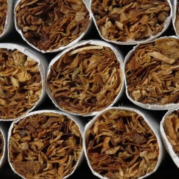 IMAGE: Menthol cigarettes